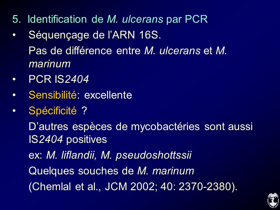 5. Identification de M. ulcerans par PCR