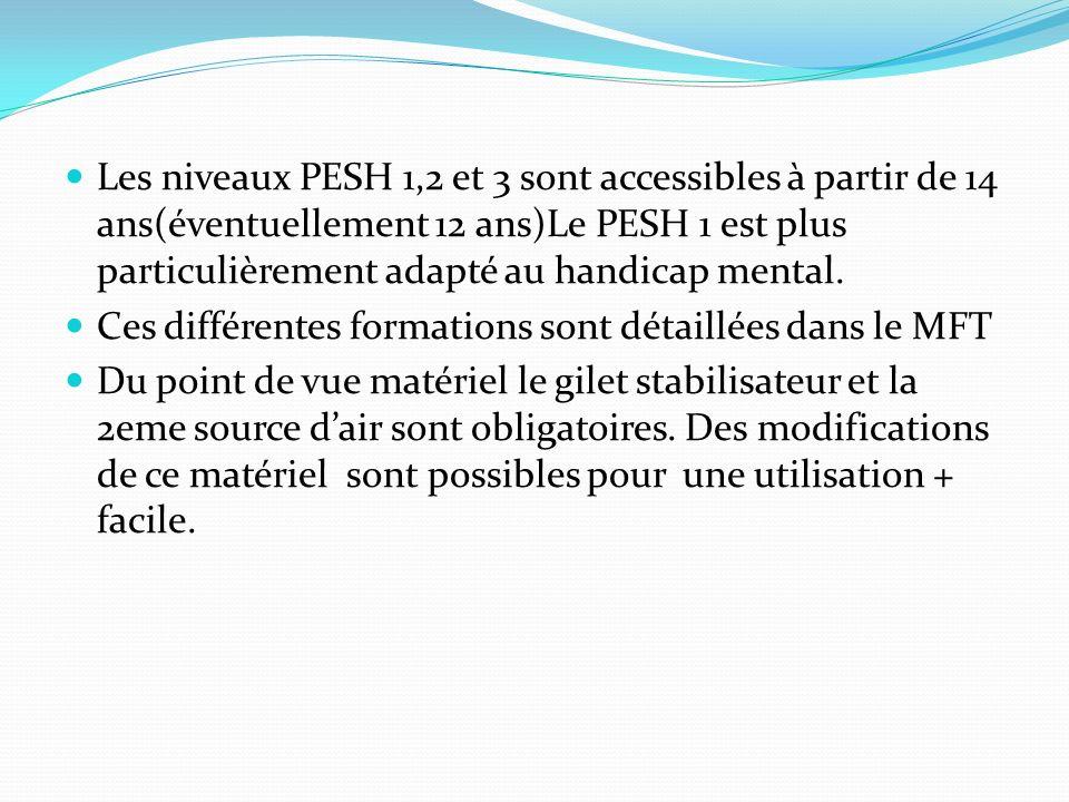Les niveaux PESH 1,2 et 3 sont accessibles à partir de 14 ans(éventuellement 12 ans)Le PESH 1 est plus particulièrement adapté au handicap mental.
