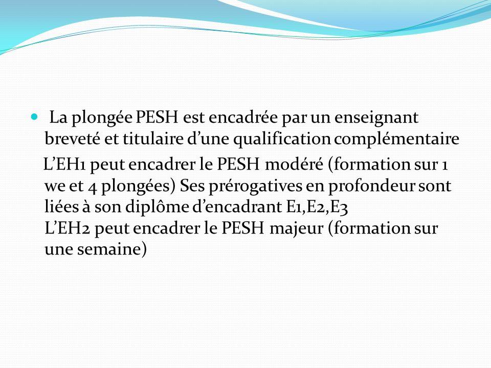 La plongée PESH est encadrée par un enseignant breveté et titulaire d'une qualification complémentaire