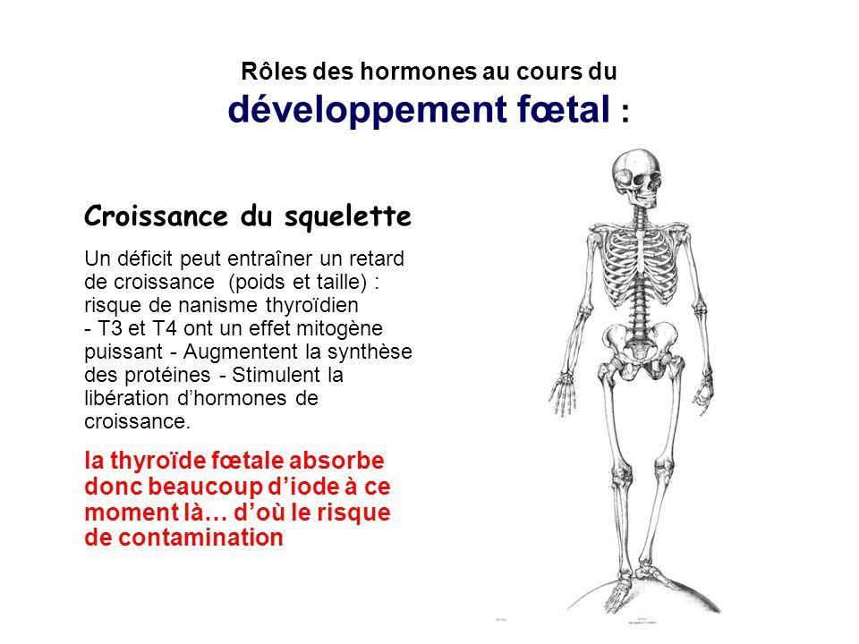 Rôles des hormones au cours du développement fœtal :