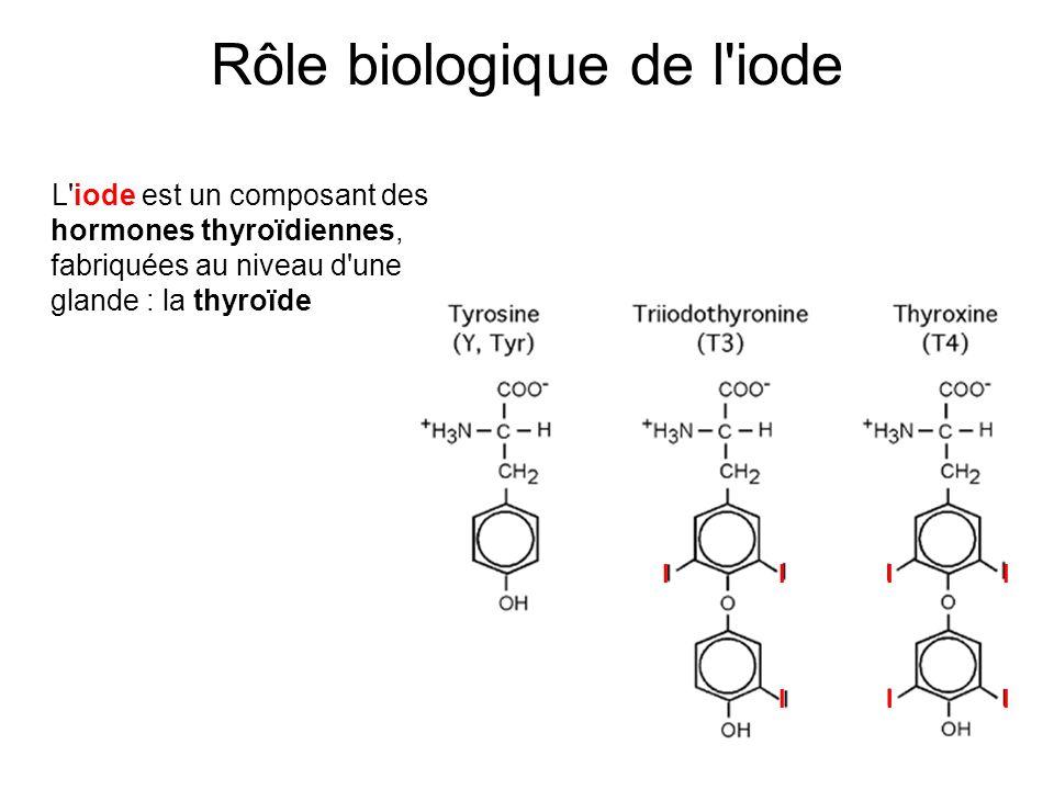 Rôle biologique de l iode