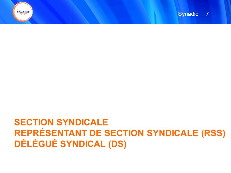 Synadic 7 SECTION SYNDICALE REPRÉSENTANT DE SECTION SYNDICALE (RSS) DÉLÉGUÉ SYNDICAL (DS)