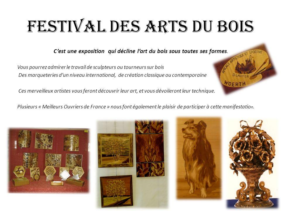 FESTIVAL DES ARTS DU BOIS
