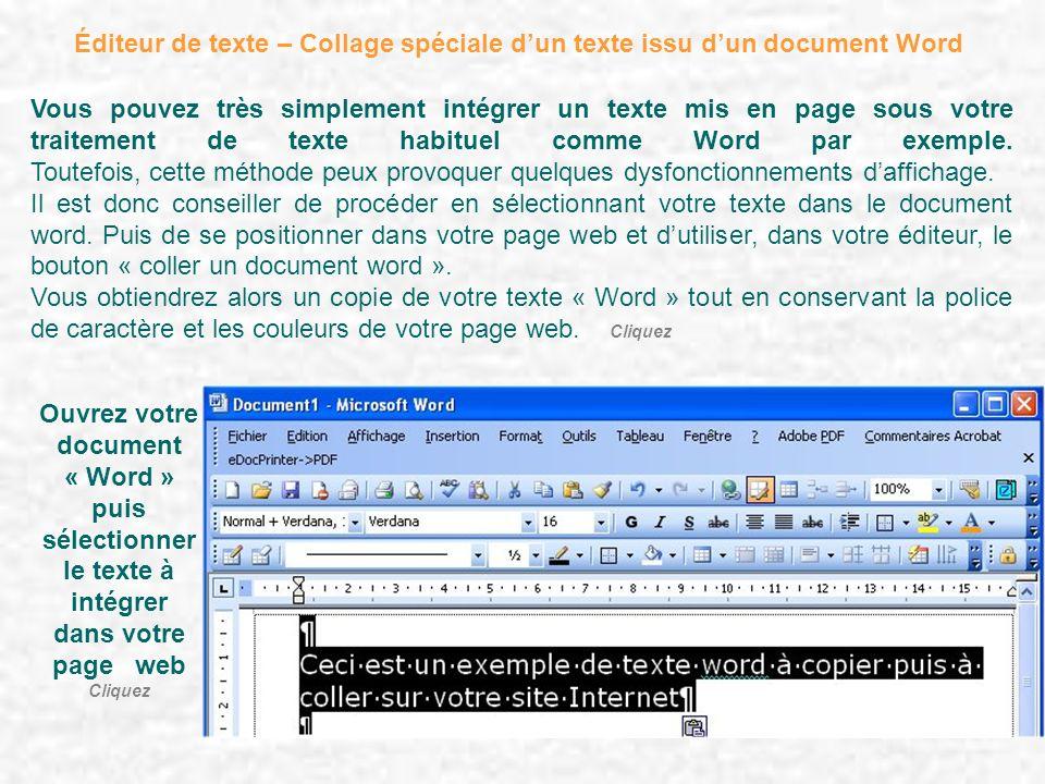 Éditeur de texte – Collage spéciale d'un texte issu d'un document Word