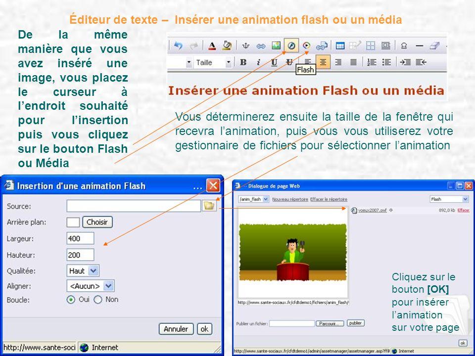 Éditeur de texte – Insérer une animation flash ou un média