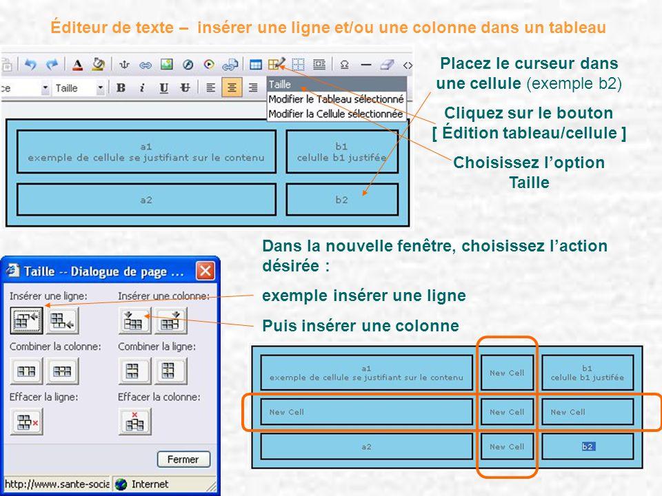 Éditeur de texte – insérer une ligne et/ou une colonne dans un tableau