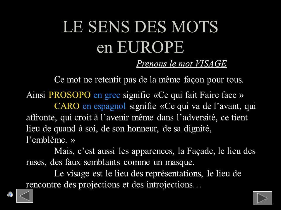 LE SENS DES MOTS en EUROPE