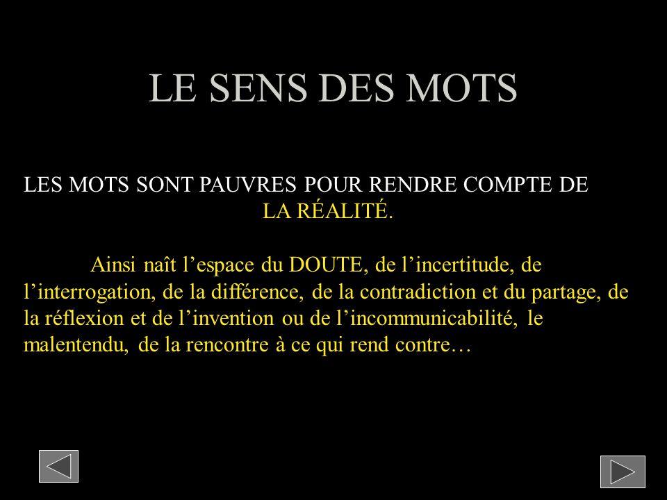 LE SENS DES MOTS LES MOTS SONT PAUVRES POUR RENDRE COMPTE DE