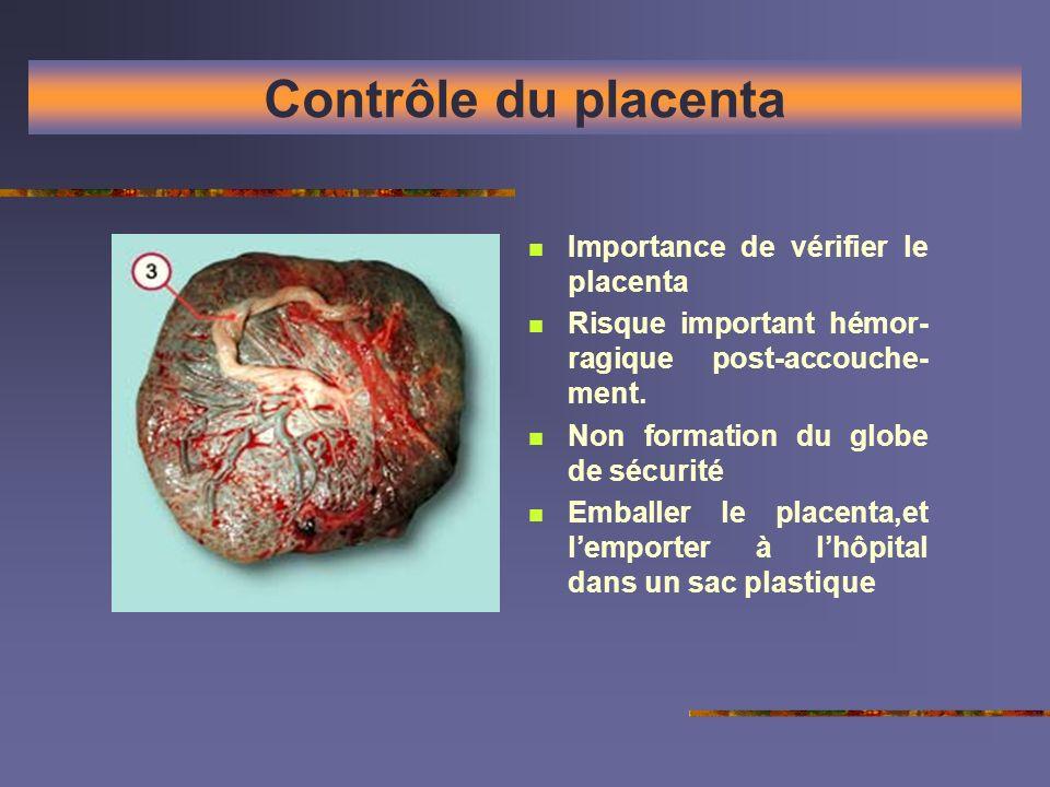 Contrôle du placenta Importance de vérifier le placenta