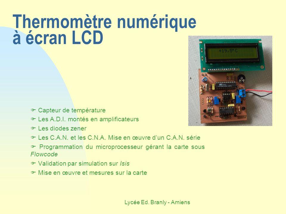 Thermomètre numérique à écran LCD