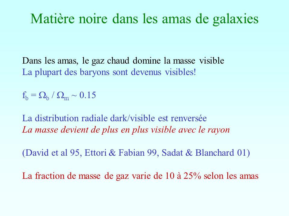 Matière noire dans les amas de galaxies