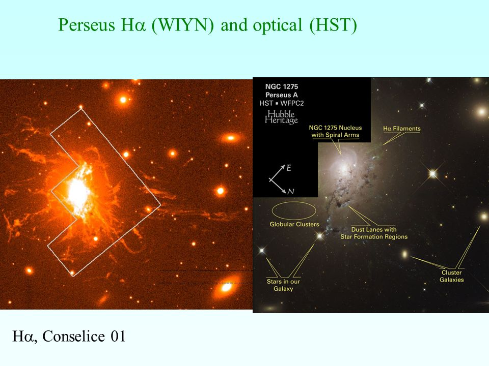 Perseus Ha (WIYN) and optical (HST)