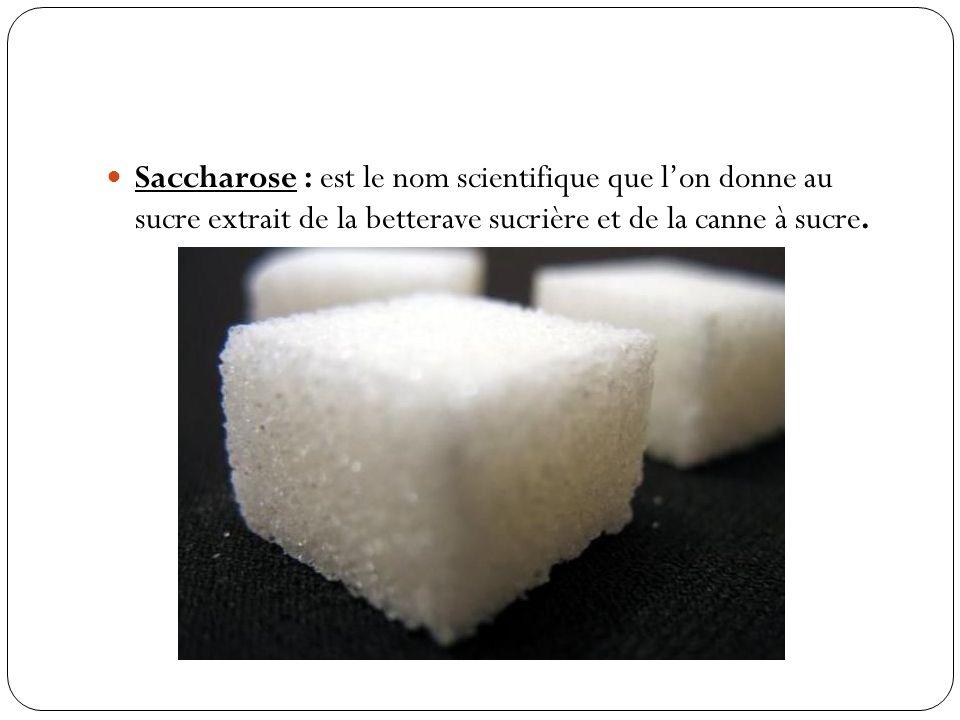 Saccharose : est le nom scientifique que l'on donne au sucre extrait de la betterave sucrière et de la canne à sucre.