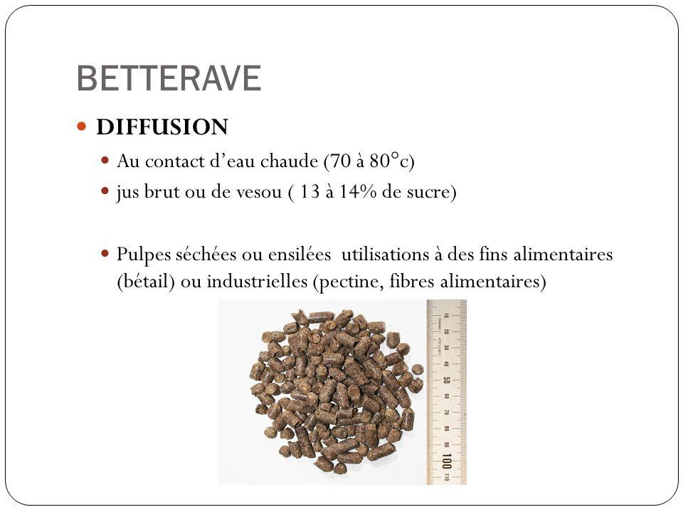 BETTERAVE DIFFUSION Au contact d'eau chaude (70 à 80°c)