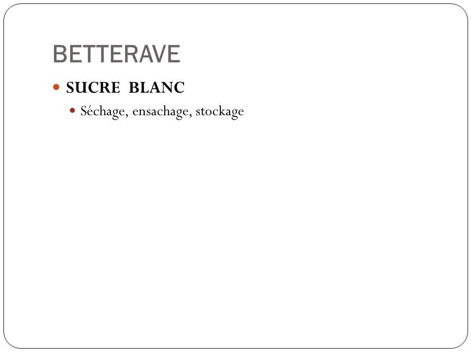 BETTERAVE SUCRE BLANC Séchage, ensachage, stockage