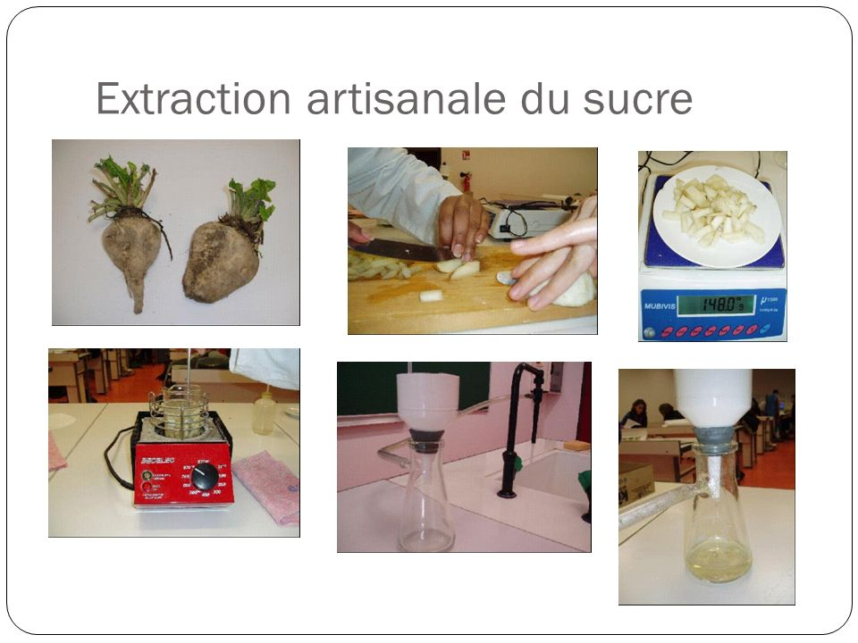 Extraction artisanale du sucre