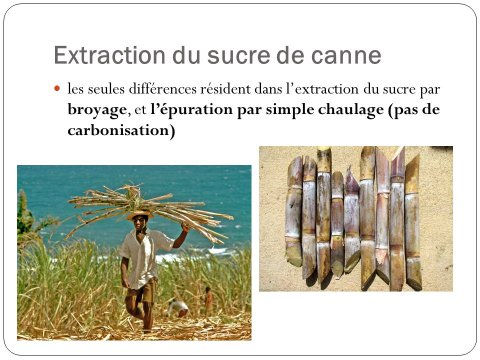 Extraction du sucre de canne