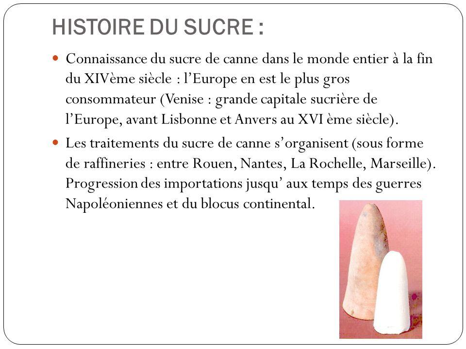 HISTOIRE DU SUCRE :