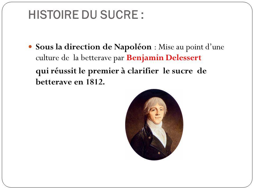 HISTOIRE DU SUCRE : Sous la direction de Napoléon : Mise au point d'une culture de la betterave par Benjamin Delessert.