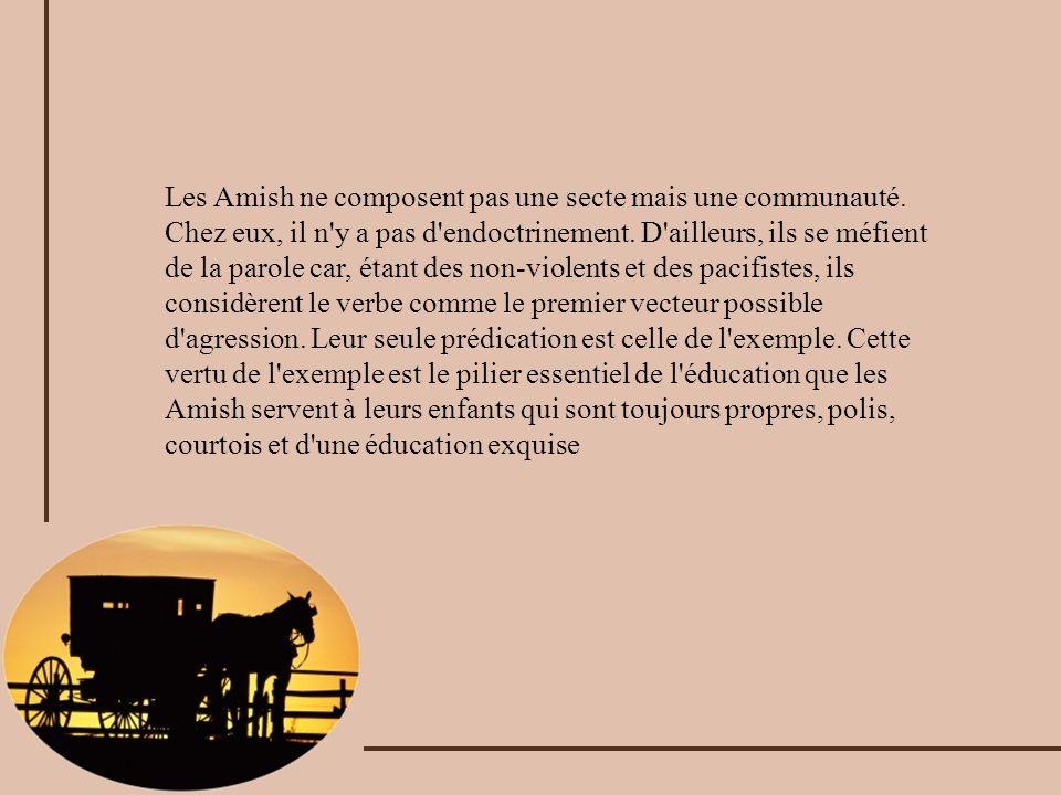 Les Amish ne composent pas une secte mais une communauté