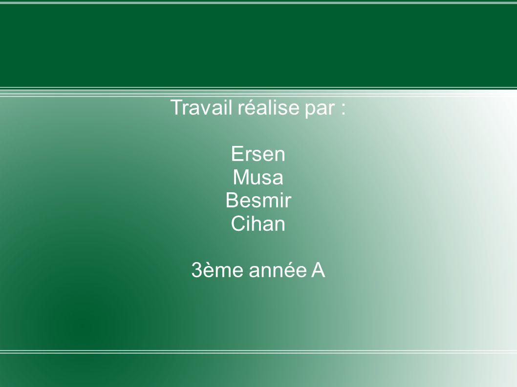 Travail réalise par : Ersen Musa Besmir Cihan 3ème année A