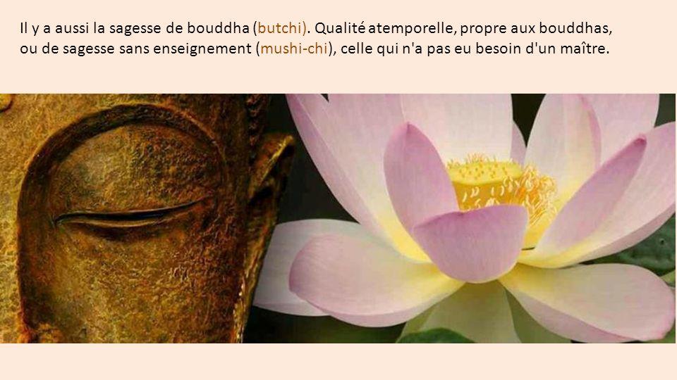 Il y a aussi la sagesse de bouddha (butchi)