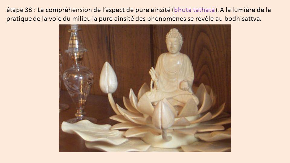 étape 38 : La compréhension de l'aspect de pure ainsité (bhuta tathata).
