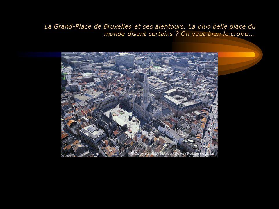 La Grand-Place de Bruxelles et ses alentours
