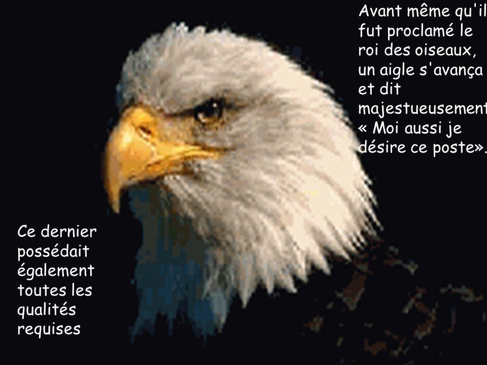 Avant même qu il fut proclamé le roi des oiseaux, un aigle s avança et dit majestueusement « Moi aussi je désire ce poste».