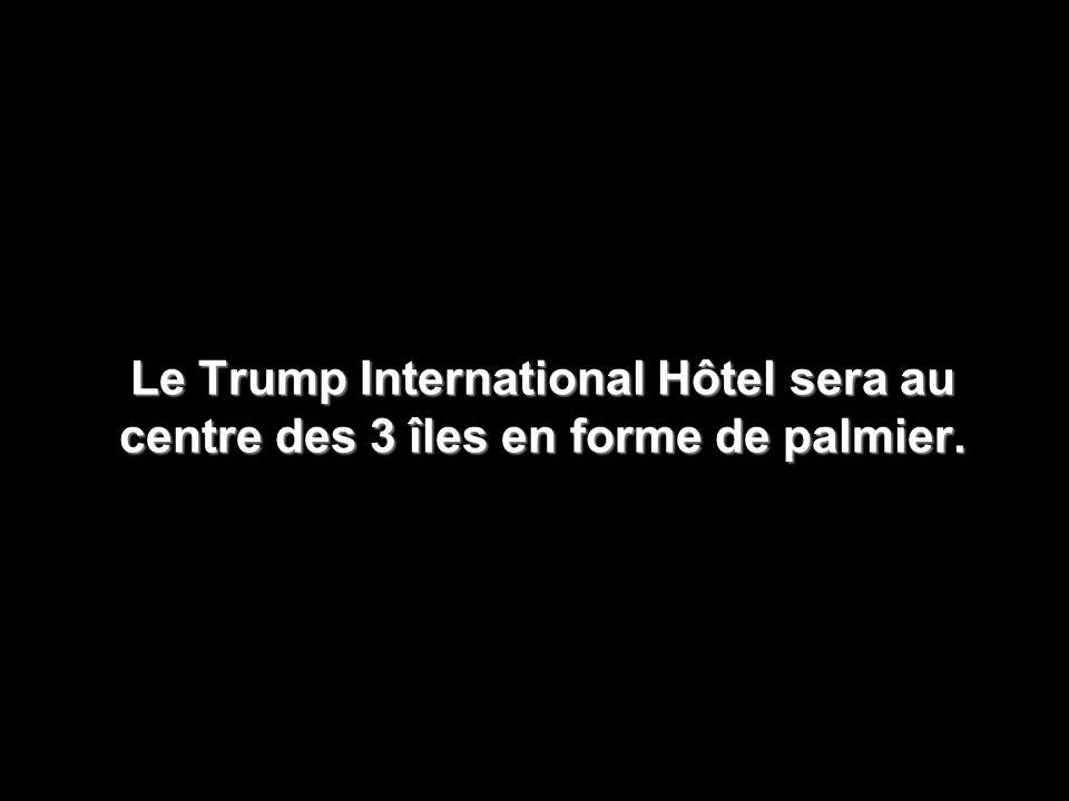 Le Trump International Hôtel sera au centre des 3 îles en forme de palmier.
