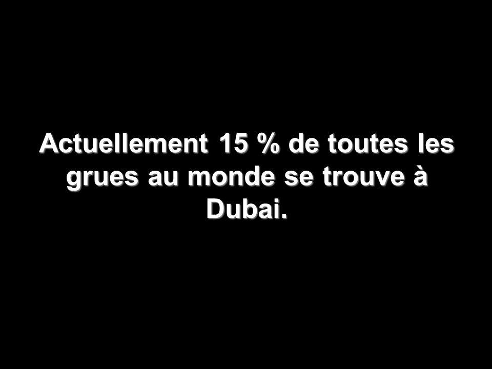 Actuellement 15 % de toutes les grues au monde se trouve à Dubai.