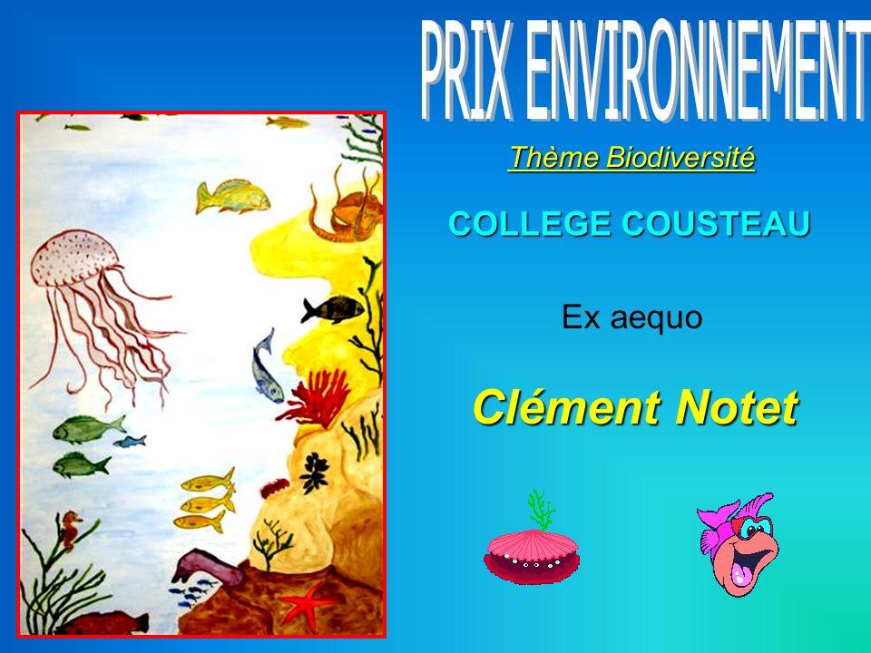 Clément Notet PRIX ENVIRONNEMENT COLLEGE COUSTEAU Ex aequo