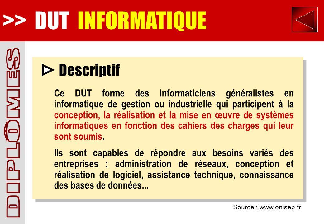 >> DUT INFORMATIQUE