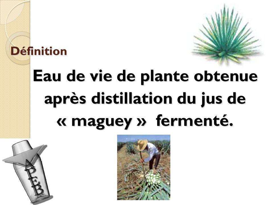 Définition Eau de vie de plante obtenue après distillation du jus de « maguey » fermenté.