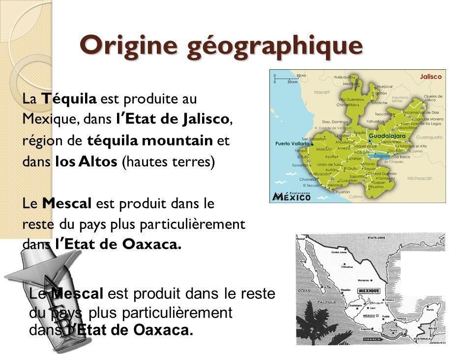 Origine géographique