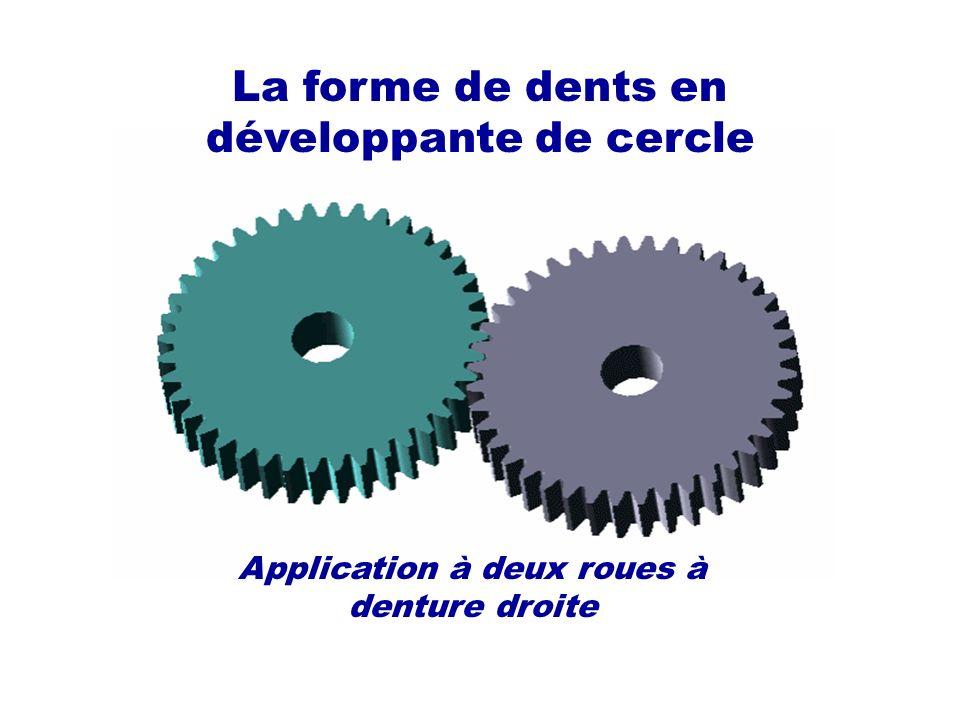 La forme de dents en développante de cercle