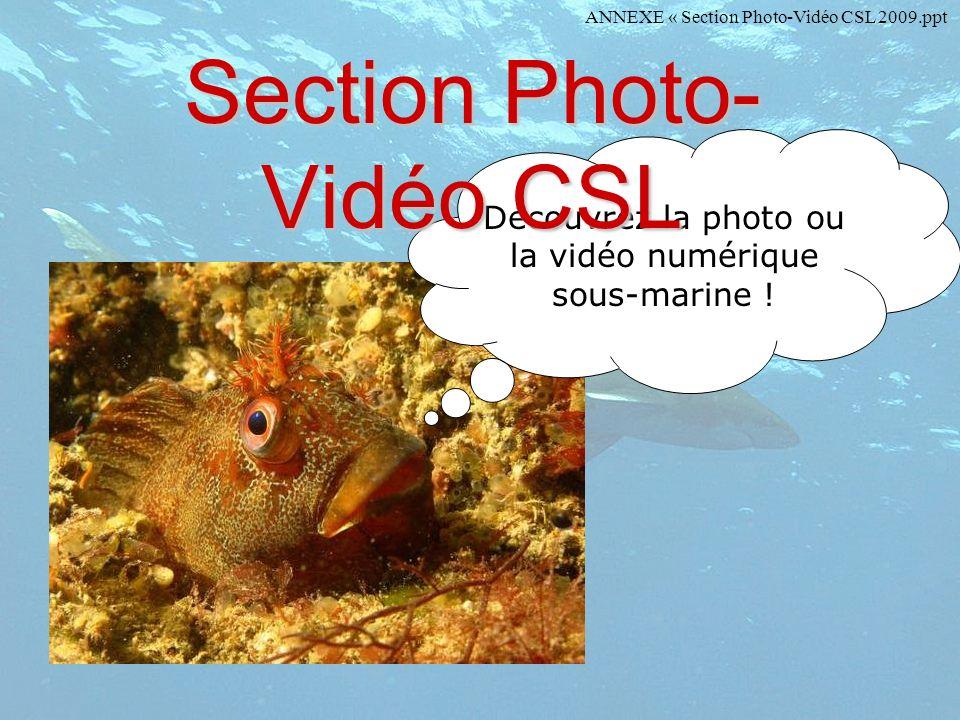 Section Photo-Vidéo CSL
