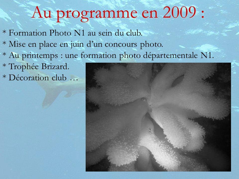 Au programme en 2009 : * Formation Photo N1 au sein du club.