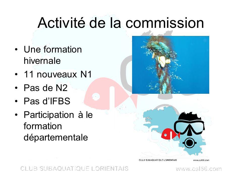 Activité de la commission