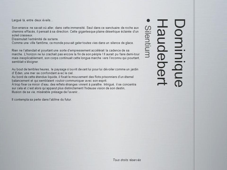 Dominique Haudebert Silentium Largué là, entre deux éveils...