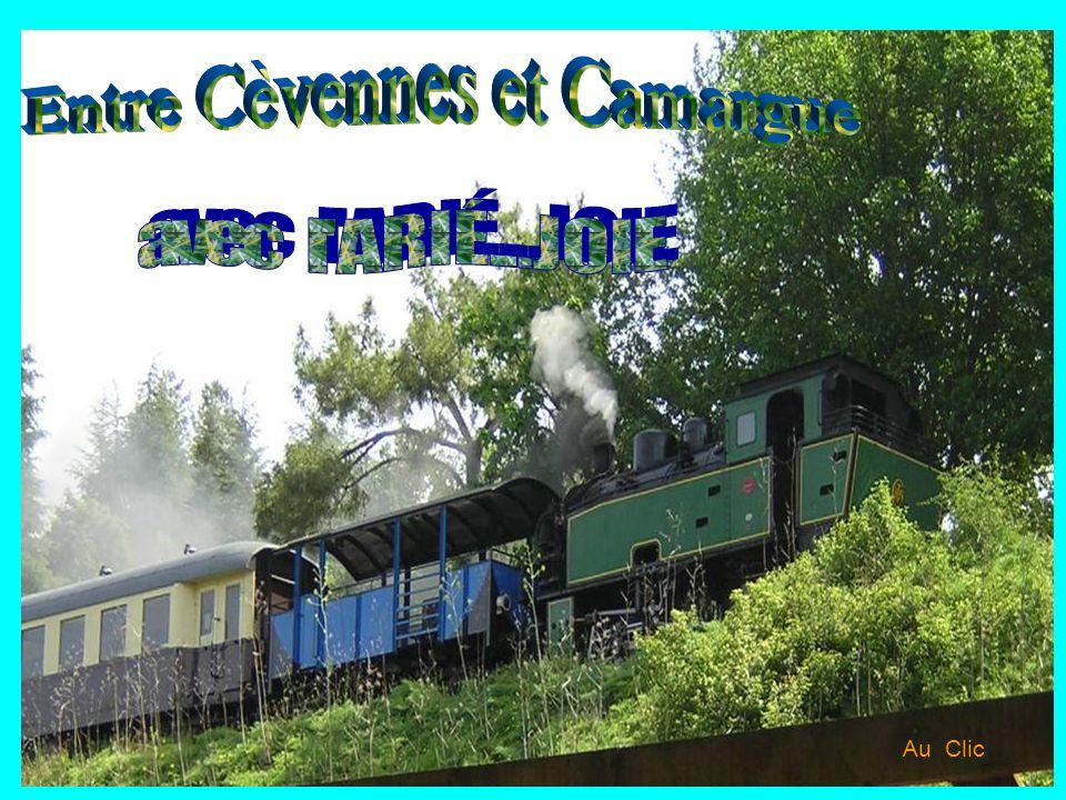 Entre Cèvennes et Camargue