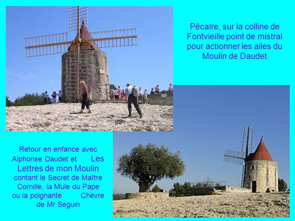 Pécaïre, sur la colline de Fontvieille point de mistral pour actionner les ailes du Moulin de Daudet