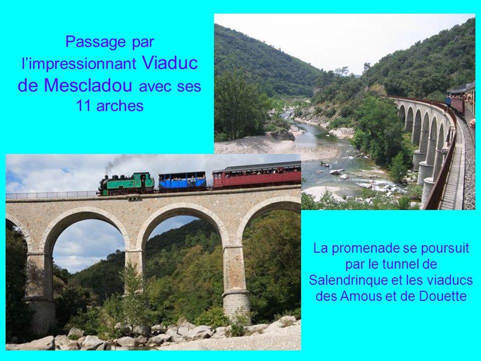 Passage par l'impressionnant Viaduc de Mescladou avec ses 11 arches