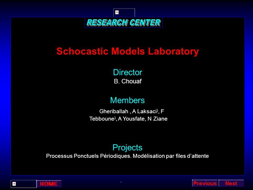 Schocastic Models Laboratory