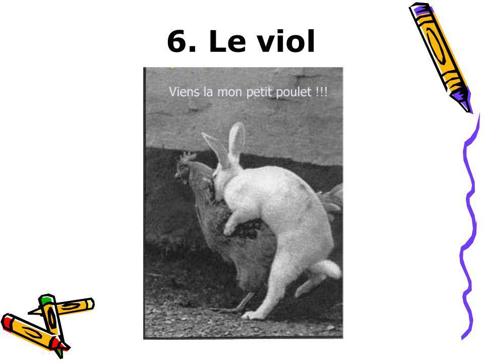 6. Le viol