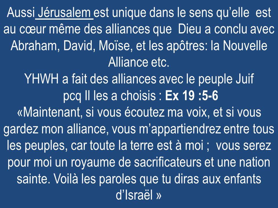 Aussi Jérusalem est unique dans le sens qu'elle est au cœur même des alliances que Dieu a conclu avec Abraham, David, Moïse, et les apôtres: la Nouvelle Alliance etc.