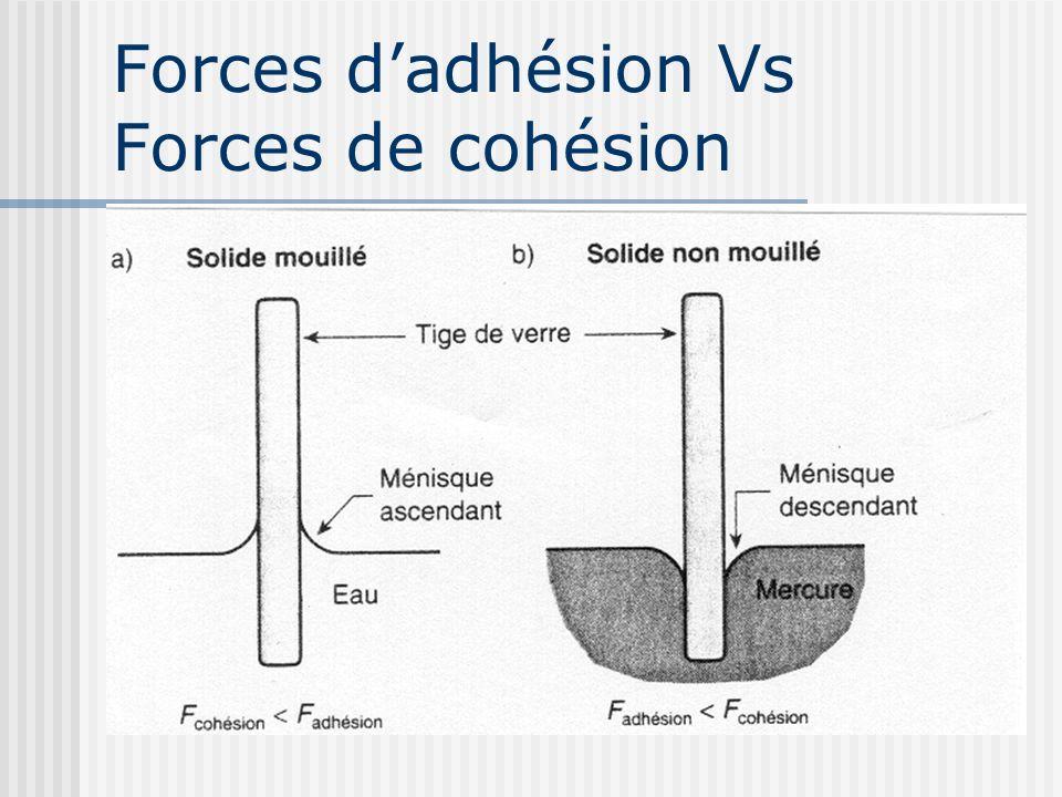 Forces d'adhésion Vs Forces de cohésion
