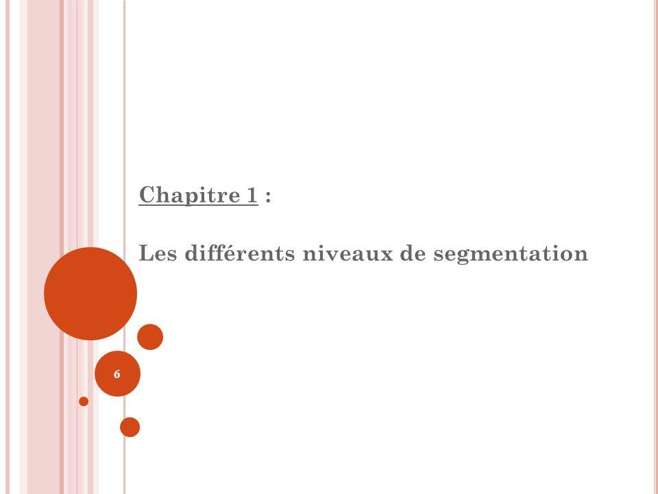 Chapitre 1 : Les différents niveaux de segmentation