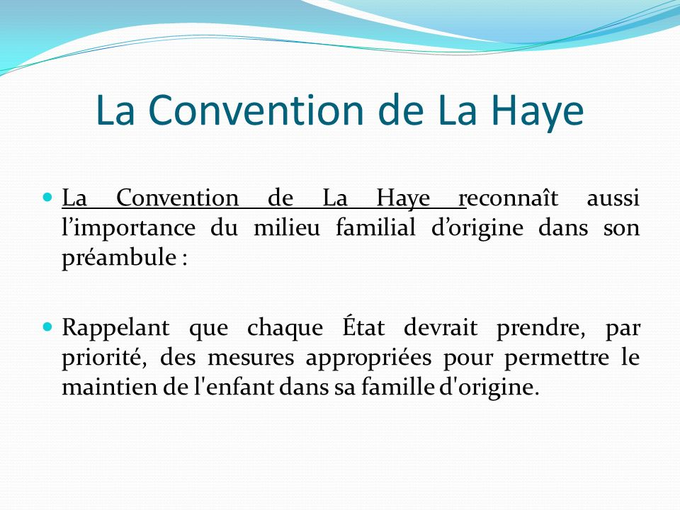 La Convention de La Haye