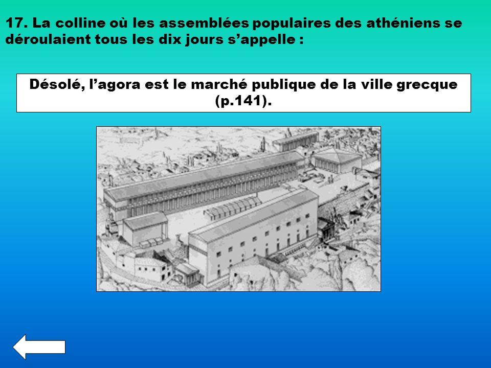 Désolé, l'agora est le marché publique de la ville grecque (p.141).
